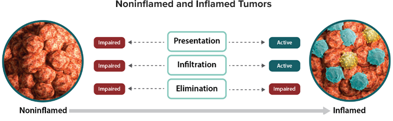 Impairing tumor antigen presentation and T-cell infiltration expressed in noninflamed and inflamed tumors diagram
