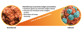 Diagram of noninflamed tumor converting to an inflamed tumor through tumor antigen presentation
