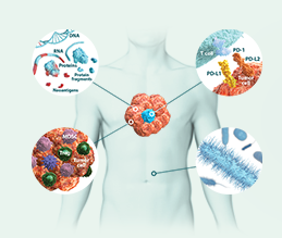 I-O Clinical Endpoints | Immuno-Oncology for HCPs | Bristol