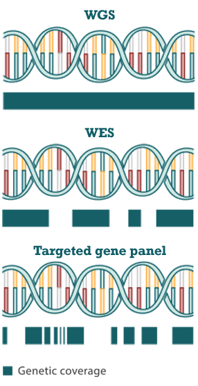 Three panels comparing the three methods of determining tumor mutation burden